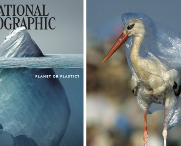 Everyone Is Applauding This National Geographic Cover But The Real Shock Lies Inside The Pages 10