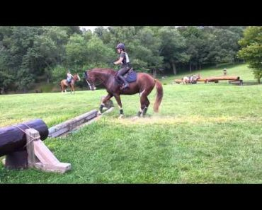 Watch This Horse Nail a Jump...Eventually 11